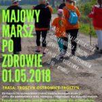 VII Majowy Marsz po zdrowie