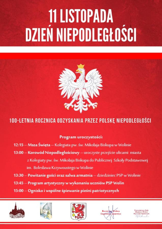 Obchody 11 listopada 2018 w Wolinie